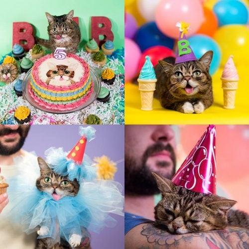 bub birthday