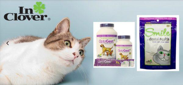 feline-supplements