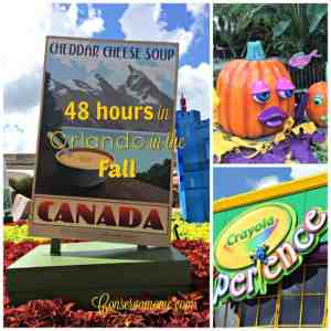 48 Hours in Orlando in the Fall! #VisitOrlando