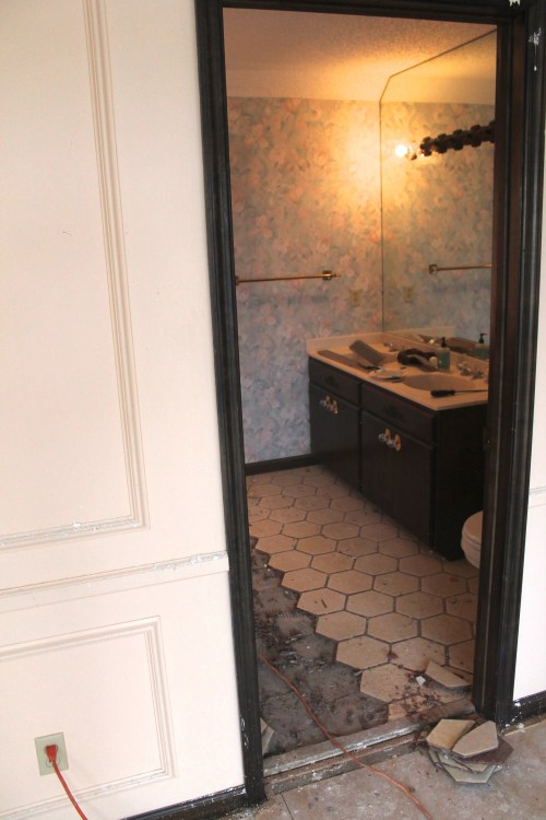 Jamie Molitor's Master Bathroom Remodel, removing tile