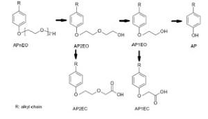 nonilfenoli-restrizione-tutela-importatore