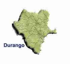 Durango thumb Pago de Tenencia, Refrendo y Placas de Durango 2013