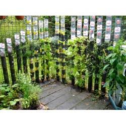 Small Crop Of Vegetable Vertical Garden