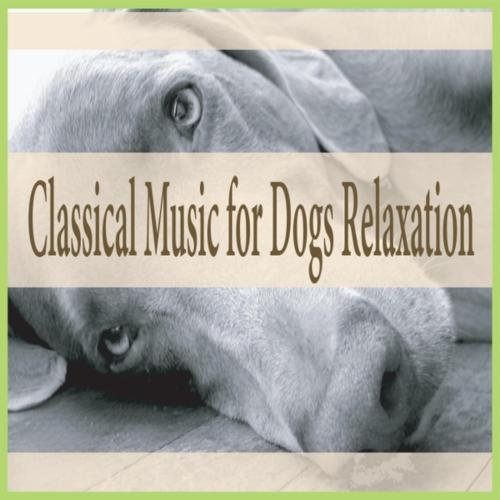 Medium Crop Of Calming Music For Dogs