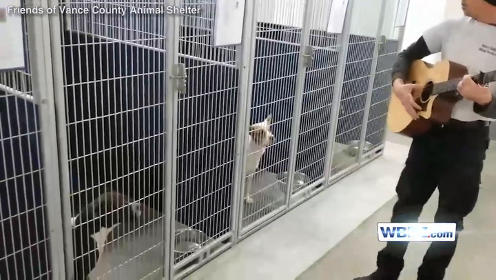 Large Of Vance County Animal Shelter