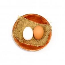 content-marketing-beginning-egg-228x230