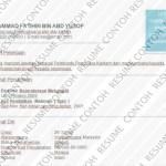 Contoh Resume pembantu penguasa kastam