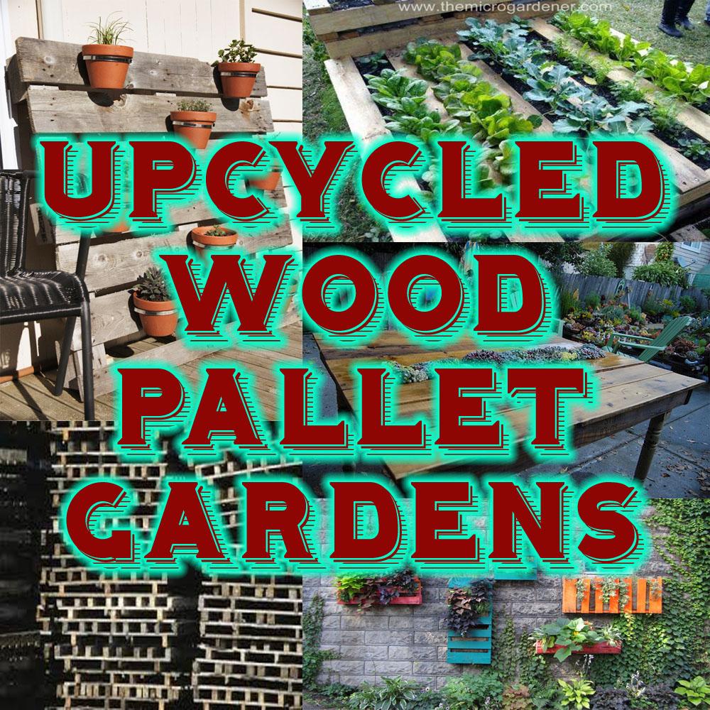 Fullsize Of Pallet Gardens Images