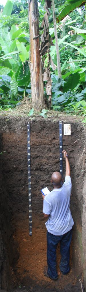 Dawit Solomon, a soil scientist at Cornell University, investigates the carbon accumulated in Liberian soil due to indigenous agricultural practices.