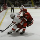 Senior alternate captain Jared Fiegl's third-period goal gave the Red a 1-0 win over St. Lawrence Saturday.