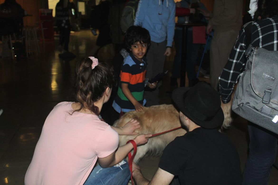 The Von Cramm Cooperative held a dog playing session to help students with their prelim stress and to raise money for PAWS in Andhra Pradesh, India. The program was a part of Procrastinate at the Straight.