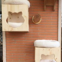 Cubi Cat's Home da esterno