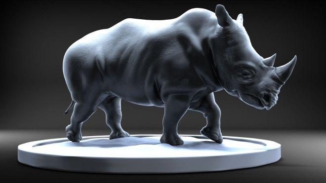 Rhinoceros Study