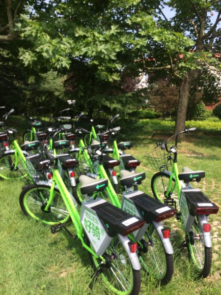 These green bikes are parked all over the property, and all over the city. No need for a bike lock, since you must scan the QR code to unlock them digitally.