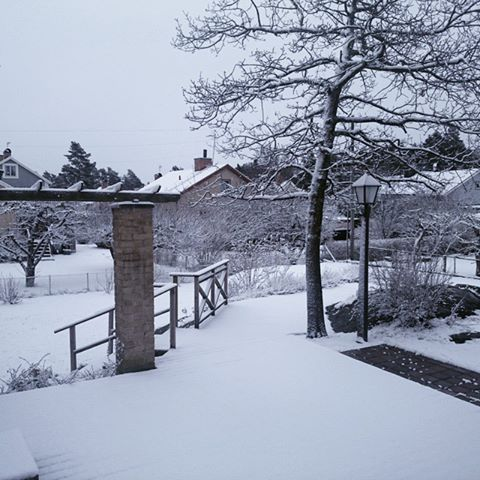 Snö...