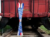 PBR/Lib Tech collab skis