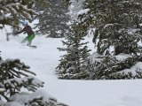 Snowboarder in the trees at Crested Butte on Jan 28, 2013