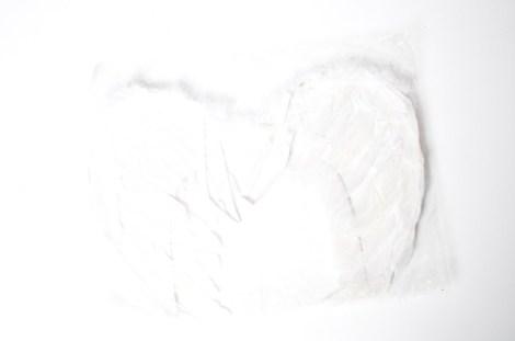 Alas de Angel Chica