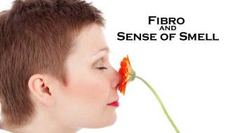 Fibro and the sense of Smell