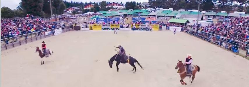 Equiblues 2015-Rodeo