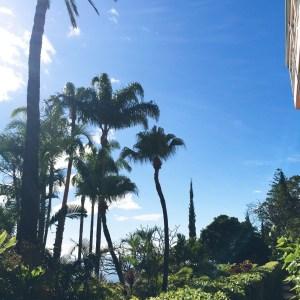 A luxury trip to Belmond Reid's Palace