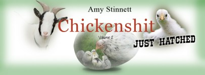 Chickenshit Vol. 2