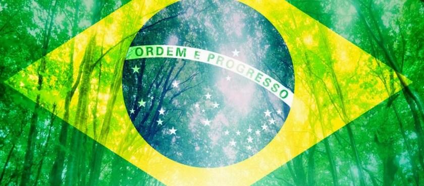 Brasil: ¿potencia ambiental? – Por José Miguel De Sousa Costa