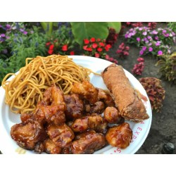 Small Crop Of Panda Express Chow Mein