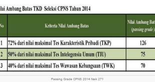 Passing Grade Kelulusan CAT CPNS 2014