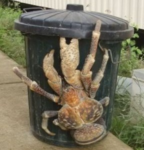 Don't mind me, just taking out the trash
