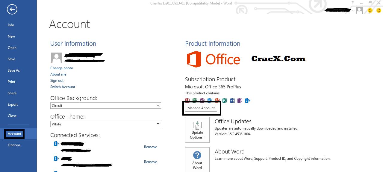 office 10 professional crack