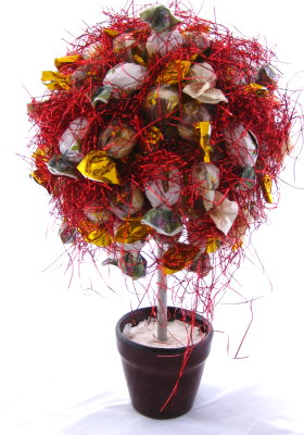 Lolly Tree – Topiary