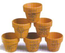 Spice Pots