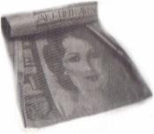 Newspaper Dustpan