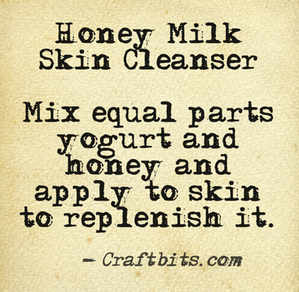 Honey Cream Skin Cleanser