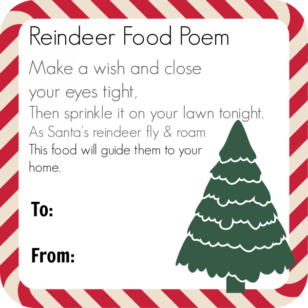 reindeer-food-magic-kids-gift