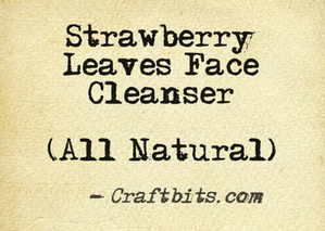 Strawberry Leaves Face Cleanser