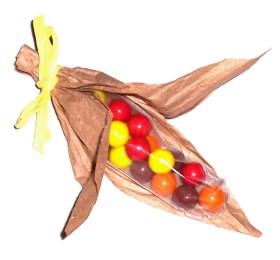 thanksgiving-indian-corn
