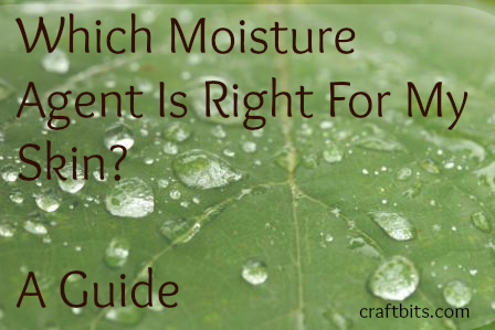 Which Moisture Agent Is Right For Me?