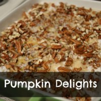 Whip It Up Wednesday-Pumpkin Delight