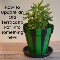 How to Update an Old Terracotta Pot into Something New