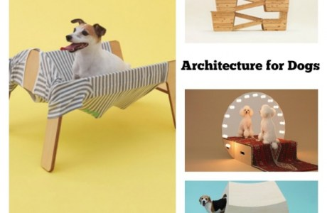 dogs-architecture
