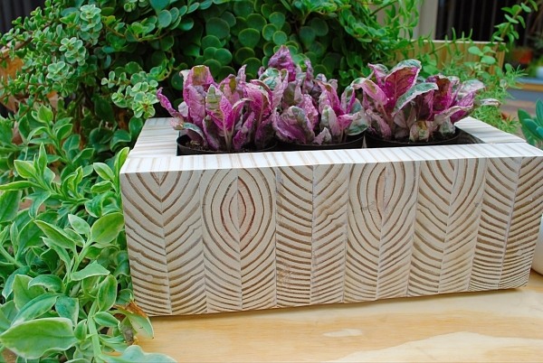 DIY Staggered End-Grain Perennial Planter