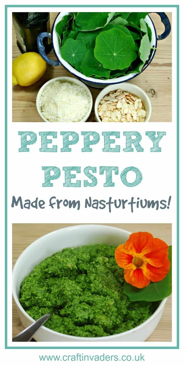 How to Make Nasturtium Pesto