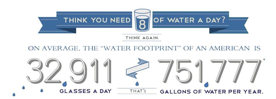 The Water We Eat | Craftsmanship, Spring 2015