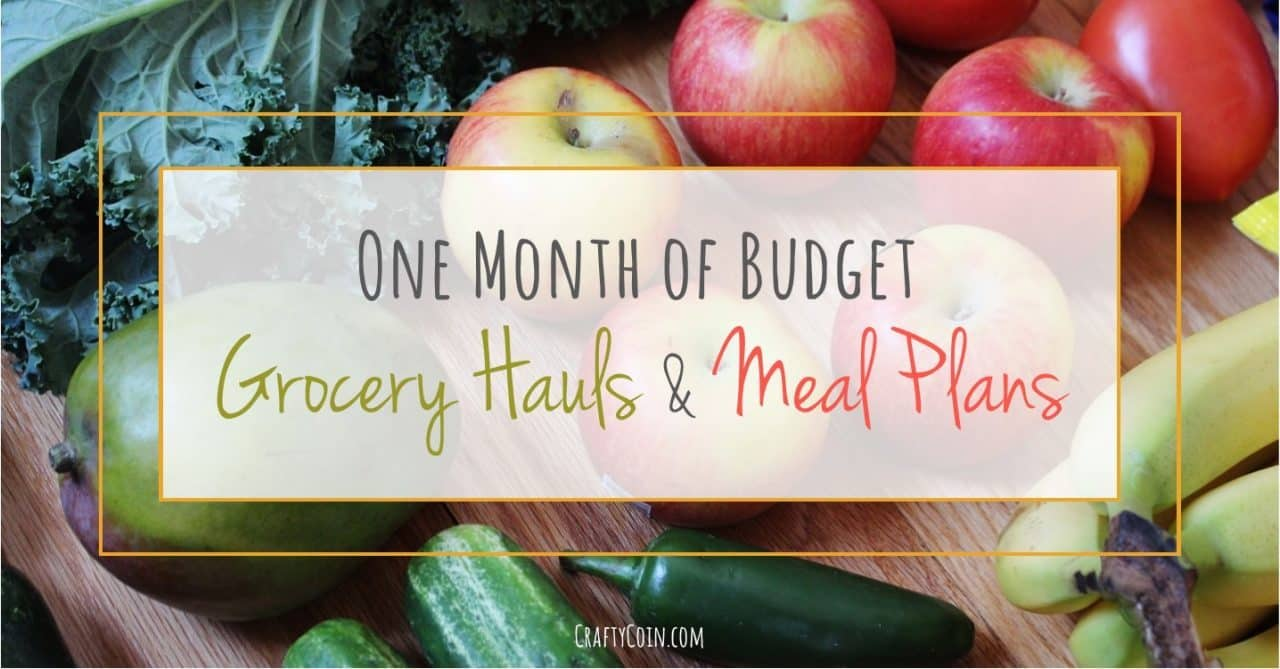 Here's one month of budget grocery hauls and meal plans for only $350!