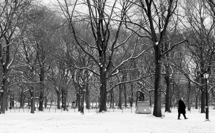 From the archives: Central Park, New York City, NY Xmas 1998