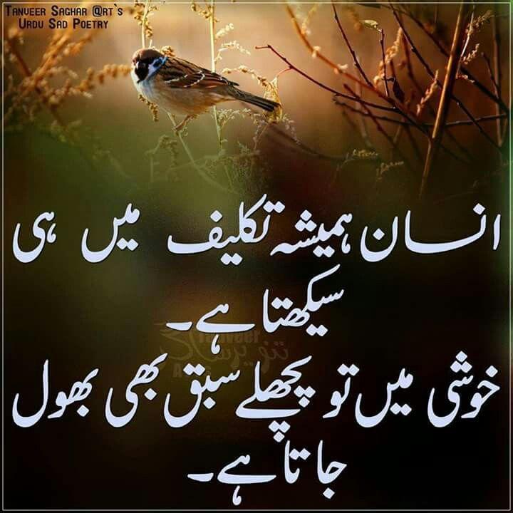 Imgenes De Best Quotes In Urdu For Dp