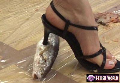 生魚♪鮮魚♪貫通♪ハイヒールでブチ抜くフークラ!(生き物クラッシュ?)
