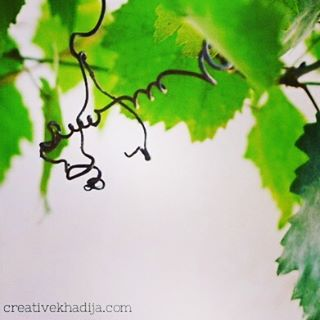 http://i1.wp.com/creativekhadija.com/wp-content/uploads/2016/05/creative-khadija-photography-flowers-roses.jpg?resize=320%2C320